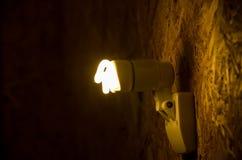 Электрическая лампочка Eco Стоковые Фотографии RF
