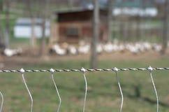 электрическая загородка Стоковые Фото