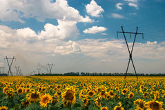 электрическая основа стоковые фотографии rf
