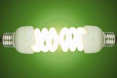 Электрические лампочки низкой энергии Стоковые Изображения