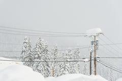 Электрический поляк покрытый с много снегом в зиме Стоковая Фотография