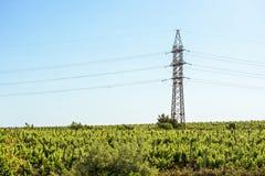 Электрический провод и большой штендер на заходе солнца в Молдавии Стоковое Изображение