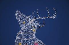 Электрический северный олень рождества Стоковое фото RF