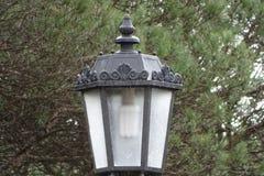 Электрический фонарный столб с предпосылкой дерева Стоковые Фотографии RF