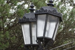 Электрический фонарный столб с предпосылкой дерева Стоковое Изображение RF