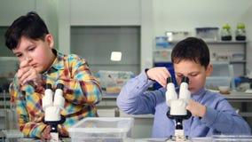 Элементарные мальчики времени делая науку экспериментируют в лаборатории школы сток-видео