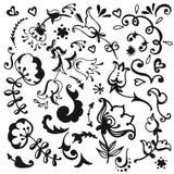 Элементы вектора нарисованные рукой декоративные Стоковая Фотография