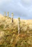 Элементы загородки на пляже, северной Голландии Стоковые Изображения RF