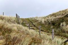 Элементы загородки на пляже, северной Голландии Стоковая Фотография RF