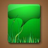 Элементы зеленого цвета брошюры продвижения Eco Стоковое Изображение RF