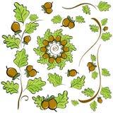 Элементы дизайна листьев и жолудей дуба иллюстрация штока
