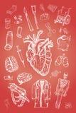 элементы медицинские Стоковые Изображения RF