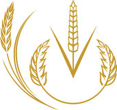 Элементы пшеницы Стоковое Изображение RF