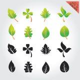 Элементы установленного дизайна листьев зеленые это изображение иллюстрация вектора Стоковые Изображения