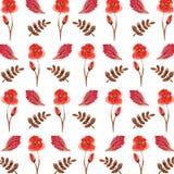 Элементы для дизайна на белой предпосылке Безшовная ретро картина с акварелями рисует листья и цветки покрашенный орнамент Стоковая Фотография
