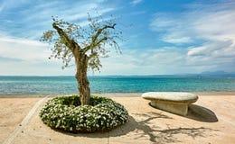 Элементы Garda озера Стоковое Фото