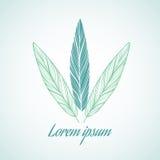 Элемент дизайна логотипа вектора на белой предпосылке Сочинительство пера Стоковая Фотография