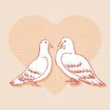 Элемент дизайна для wedding поздравительной открытки Стоковая Фотография