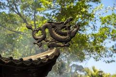 Элемент дракона Стоковые Изображения RF