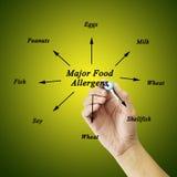 Элемент сочинительства руки женщин главных аллергенов еды (молока, яичка, Стоковое фото RF