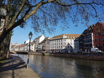 Эльзасское река Стоковая Фотография