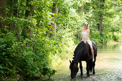 Эльф и лошадь Стоковые Изображения