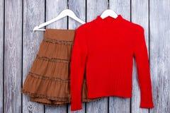 Юбка Брайна и красный пуловер на вешалках Стоковое фото RF