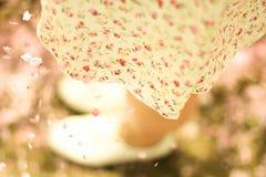 юбка Стоковые Фото