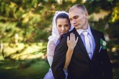 ювелирные изделия cravat пар кристаллические связывают венчание Стоковые Фото