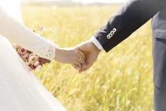 ювелирные изделия cravat пар кристаллические связывают венчание Стоковая Фотография RF