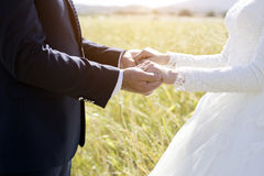 ювелирные изделия cravat пар кристаллические связывают венчание Стоковое фото RF