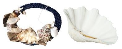 Ювелирные изделия seashells Стоковые Фото