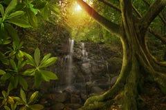 Юговосточные азиатские джунгли с водопадом Стоковое Изображение RF