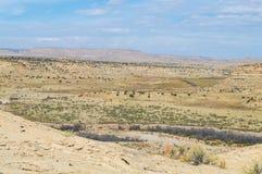 Юго-западный ландшафт Стоковое Изображение
