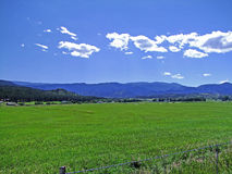 южная гор ландшафта утесистая Стоковая Фотография RF