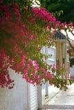 Южная испанская улица Стоковое Фото