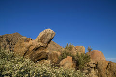 Южная Калифорния, ландшафт США Стоковые Фото