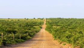 Южная дорога ранчо Техаса Стоковые Изображения RF