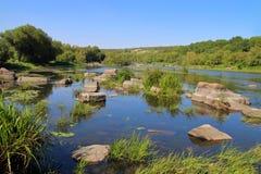 Южное река черепашки на летний день Стоковая Фотография RF