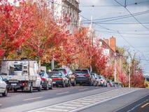 Южное Yarra, VIC/Australia- 27-ое апреля 2018: Улица ` s Мельбурна пригородная с деревьями осени стоковое изображение