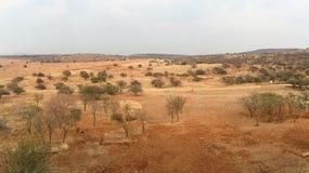 Южно-африканская зона пастбища Стоковые Изображения RF
