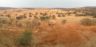 Южно-африканская зона пастбища Стоковое Фото