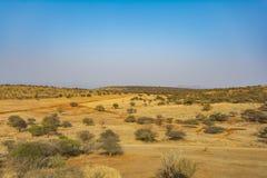 Южно-африканская зона пастбища Стоковые Фотографии RF