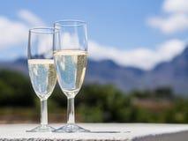 Южно-африканское белое игристое вино в саде стоковые изображения