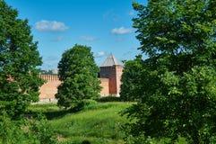 Южные башни стены 3 Смоленска Кремля Стоковые Фотографии RF