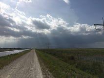 Южные болотистые низменности Флориды Стоковая Фотография RF