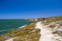 Южный австралийский свободный полет Стоковое фото RF