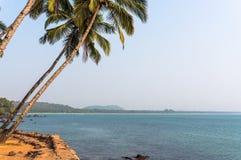Южный ландшафт Goa Индии, ладонь налево моря Стоковые Изображения