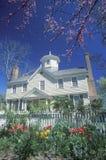 Южный дом типа Стоковое Фото