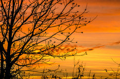 Южный заход солнца Стоковые Фото